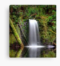 HDR Waterfall Paradise Canvas Print