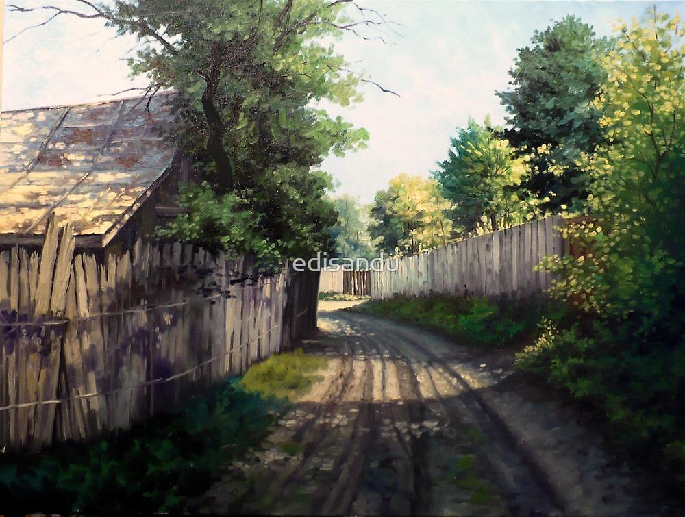 the lane by edisandu