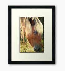 Beautiful blond Framed Print