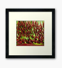 Frosted Red Framed Print