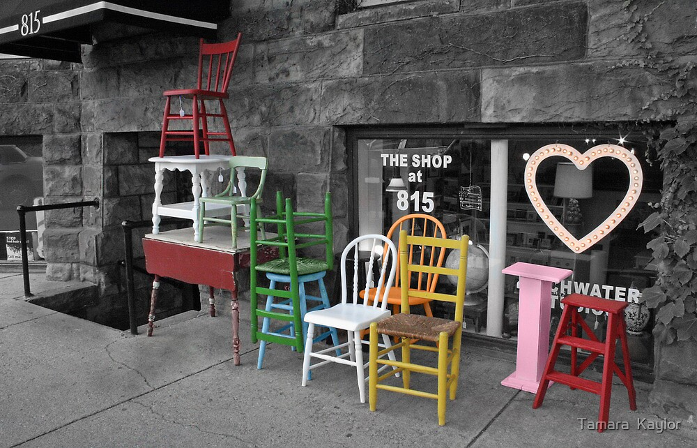 The Shop at 815 by Tamara  Kaylor