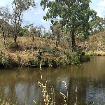 Australian Outback by Lozzeh