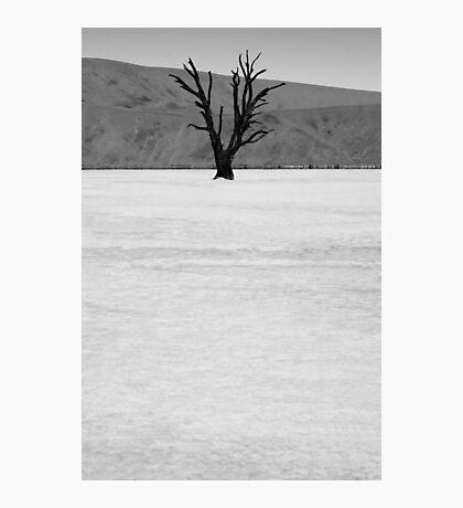 Deadvlei II Photographic Print