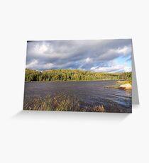 Windy Lake - Muskoka Greeting Card