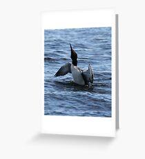 Loon 1 - Lake Muskoka Greeting Card