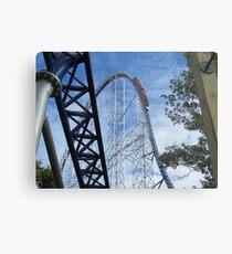 Cedar Point  Metal Print