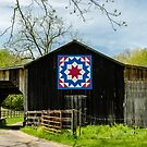 Kentucky Barn Quilts by Mary Carol Story