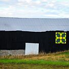 FC Barn Quilt 1 by Mary Carol Story