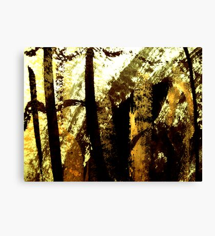 aki light..... gold rays Canvas Print
