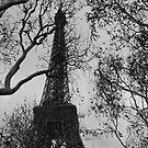 The Eiffel Tower In Winter by minikin