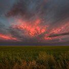 Summer Sky by IanMcGregor