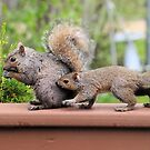 leap frog? by Cheryl Dunning