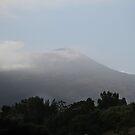 Mount Vesuvius by Samantha Higgs