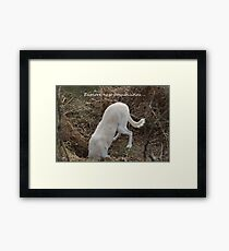 Explore new possibilities Framed Print