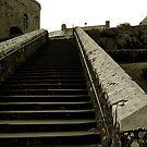 St David's Steps by ragman
