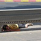 Down & out in Tel Aviv by JudyBJ