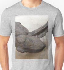 Stupendous Ankylosaurus T-Shirt