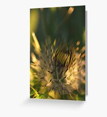 New thistle ll Greeting Card