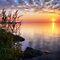 Summer Sunset or Sunrise