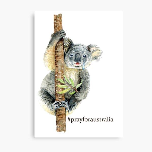 Pray for Australia Koala  Metal Print