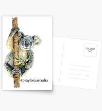 Pray for Australia Koala  Postcards