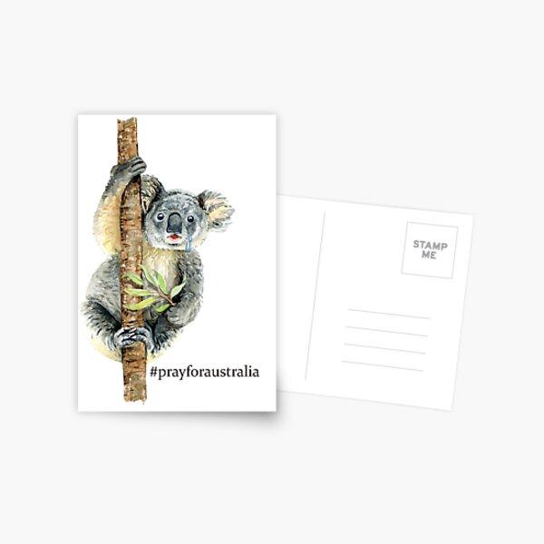 Pray for Australia Koala  Postcard