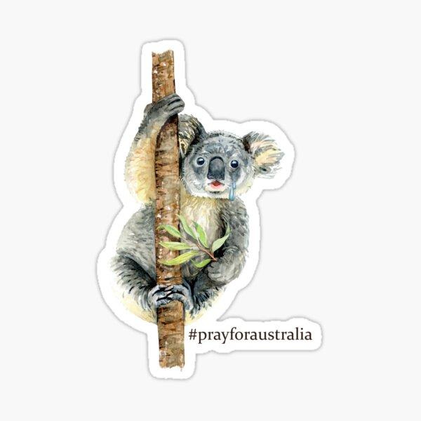 Pray for Australia Koala  Sticker