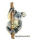 Pray for Australia Koala  by IconicTee