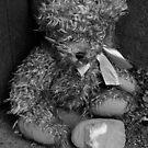 Childhood's End - Heartbroken by MetalPhoto