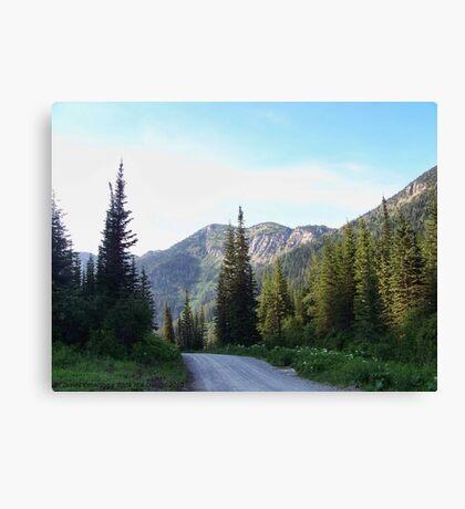 Jewel Basin Canvas Print