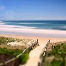Beach Dreaming by Kym Howard