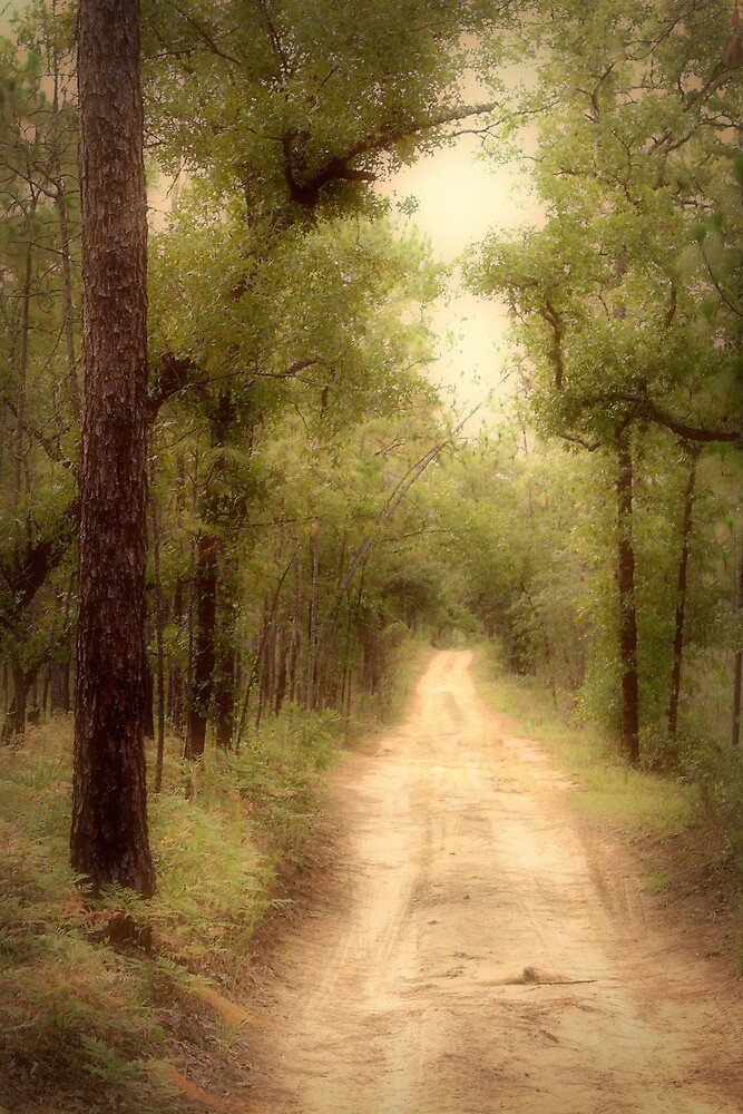 The roads with no names hold the greatest adventures by Rebecca Morrison