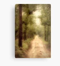 The roads with no names hold the greatest adventures Metal Print