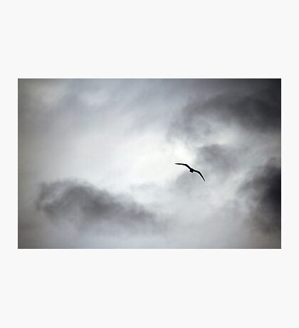 Rider on the Storm Photographic Print