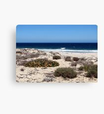 Holiday! Canvas Print