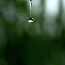 What a drip ! by Shubd