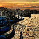 Buon Giorno Venezia by Barbara  Brown