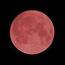Blood Moon by MetalPhoto