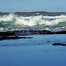 Cronulla Surf And Silence by Tina Wright