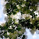 Fluffy tree 2 by Shulie1