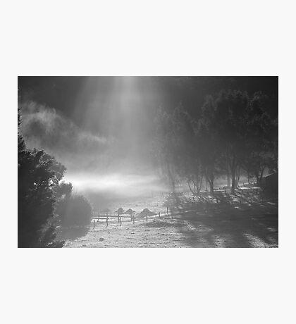 farmscapes #90, shone upon Photographic Print