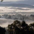 landscapes #215, foggy valleys by stickelsimages