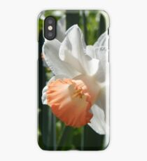 Two-tone Daffodils iPhone Case