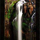 Daggs Falls by Kym Howard