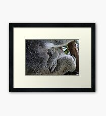The safest place in the world Framed Print