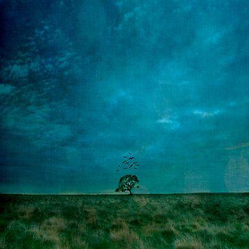 One Tree by melinda