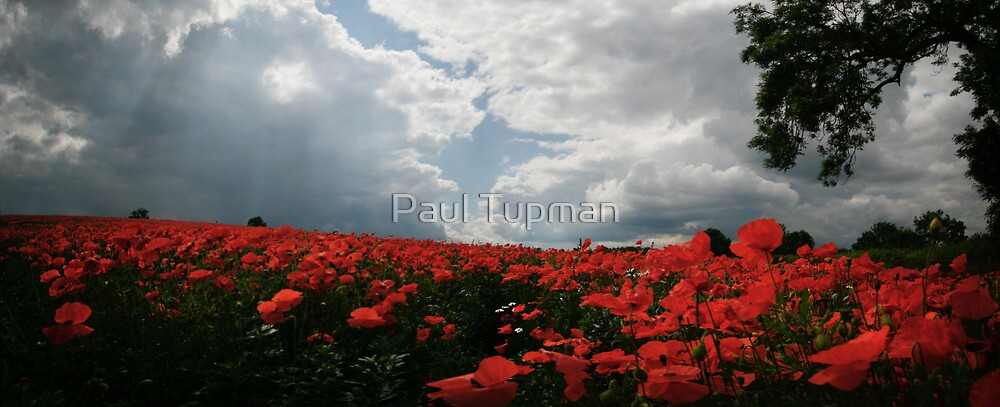 You're Welcome by Paul Tupman