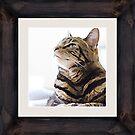 Tabby Cat Framed Gallery Art by WiseKitty