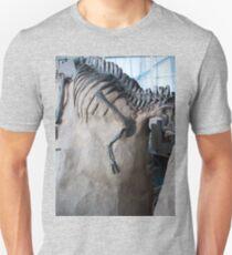 Cool Albertosaurus T-Shirt