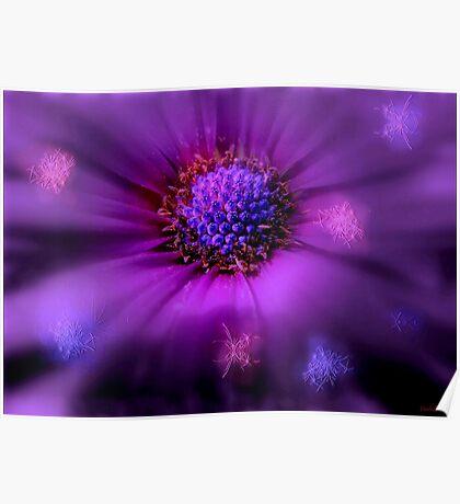 Flower Chakra Poster